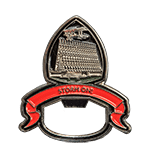 Air Force Storm One Challenge Coin
