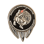 Air Force 51st Combat Squad Challenge Coin